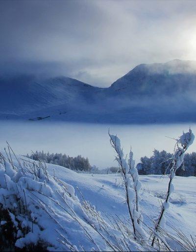 Rannoch Moor Mist