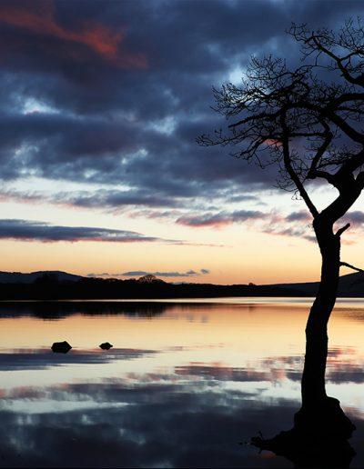 On the Bank of Loch Lomond